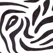 Зебра классик