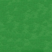 Инка зелёный