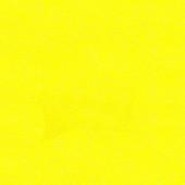Инка жёлтый