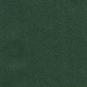 Родео зеленый