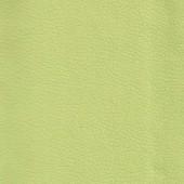 Санта Д светло-зеленый