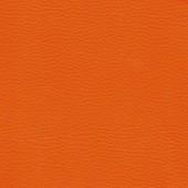 Таллер 309 оранж