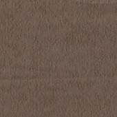 ВИТА Марс Какао (компаньон)
