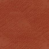 ВИТА Марс Корал
