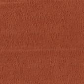 ВИТА Марс Корал (компаньон)