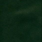 ХЛ тёмно-зеленый