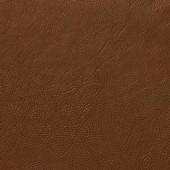 Экто Титаник 3844 Камел