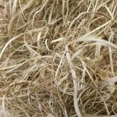Мебельная морская трава